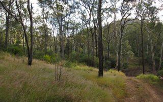 Bokora Corridor Game Reserve
