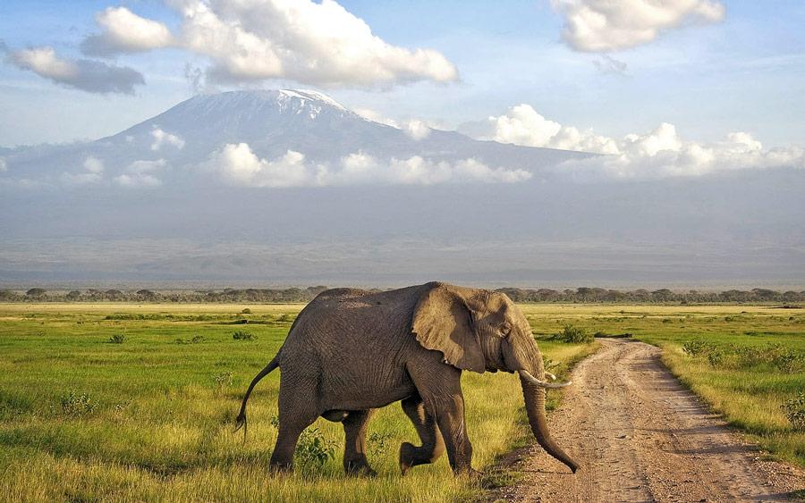 7 days Kenya safari samburu, Nakuru masia Mara