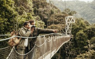 Canopy Walkway in Nyungwe Forest National Park