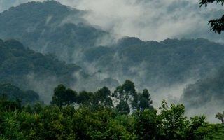 Weather in Bwindi Impenetrable National Park