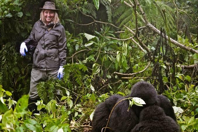 Essentials for Gorilla Trekking in Uganda