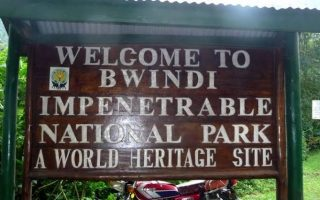 How to access Bwindi Impenetrable National Park