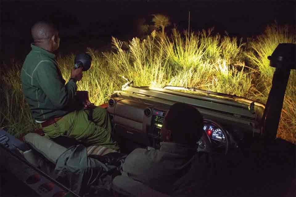 Night Game Drive Tours in Uganda