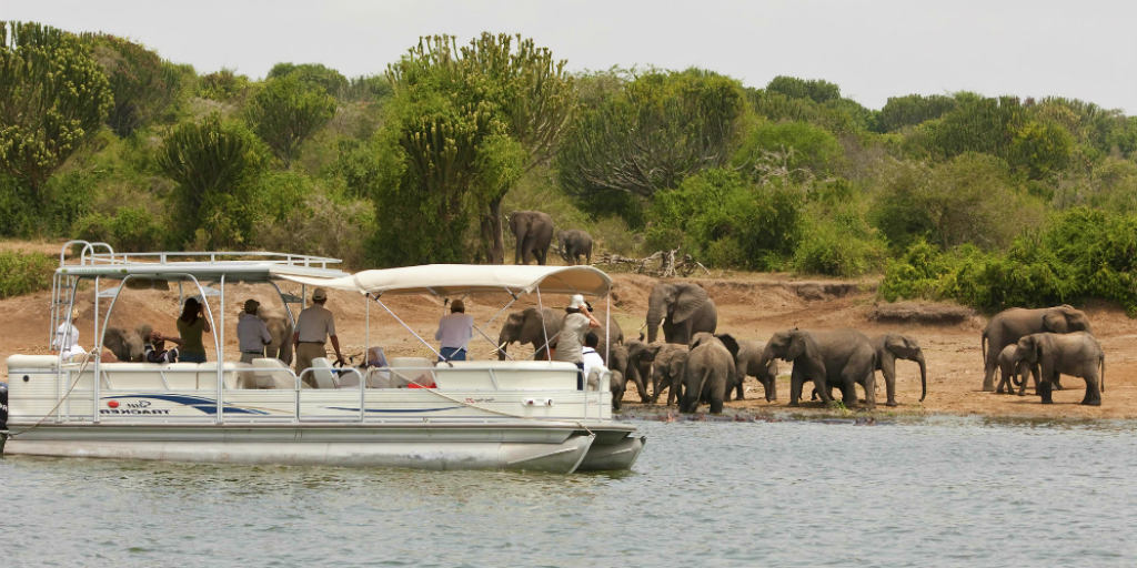 12 Days Uganda Primates & Wildlife tour