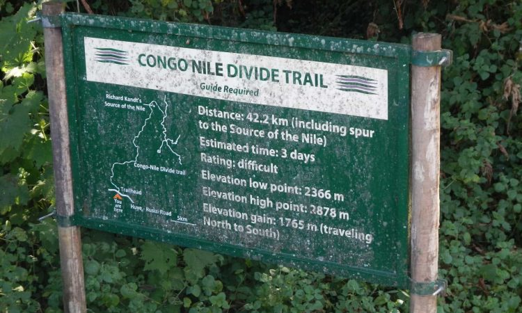 Hiking Trails in Nyungwe Forest National Park