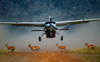 3 Days Fly in Masai Mara Safari