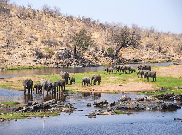 10 Days Southern Tanzania and Zanzibar safari