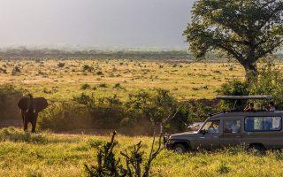 4 Days Tsavo West Wildlife Safari