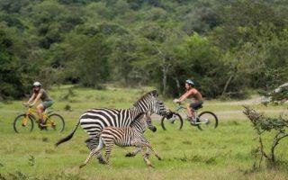 Top 5 Safari Activities in Lake Mburo National Park