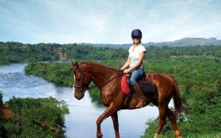 Horseback Riding in Jinja