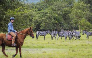 Horseback ride safari in Lake Mburo National Park